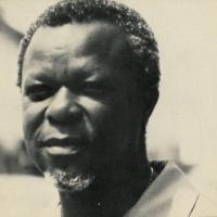 THE MESH by Kwesi Brew